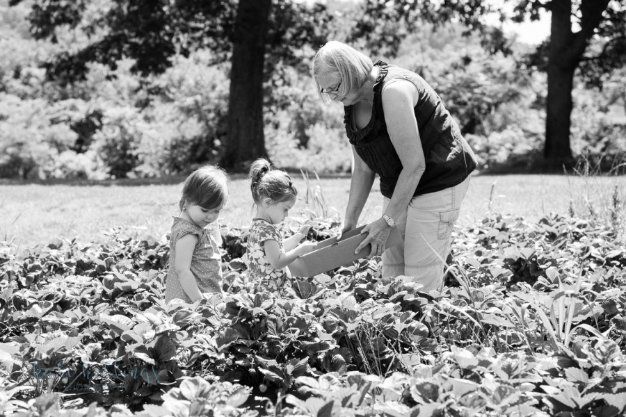 Strawberry picking with grams