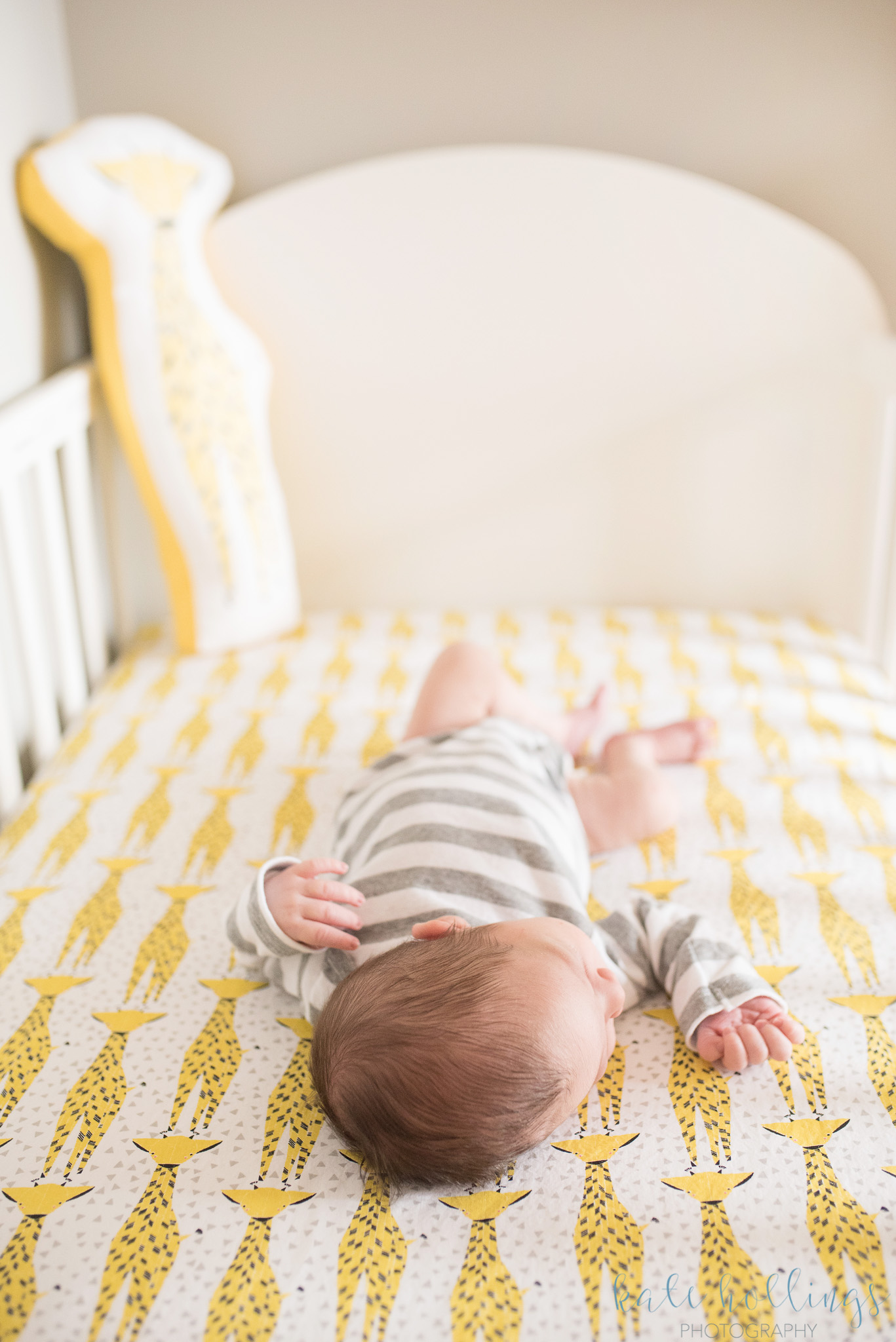 Baby boy & giraffes
